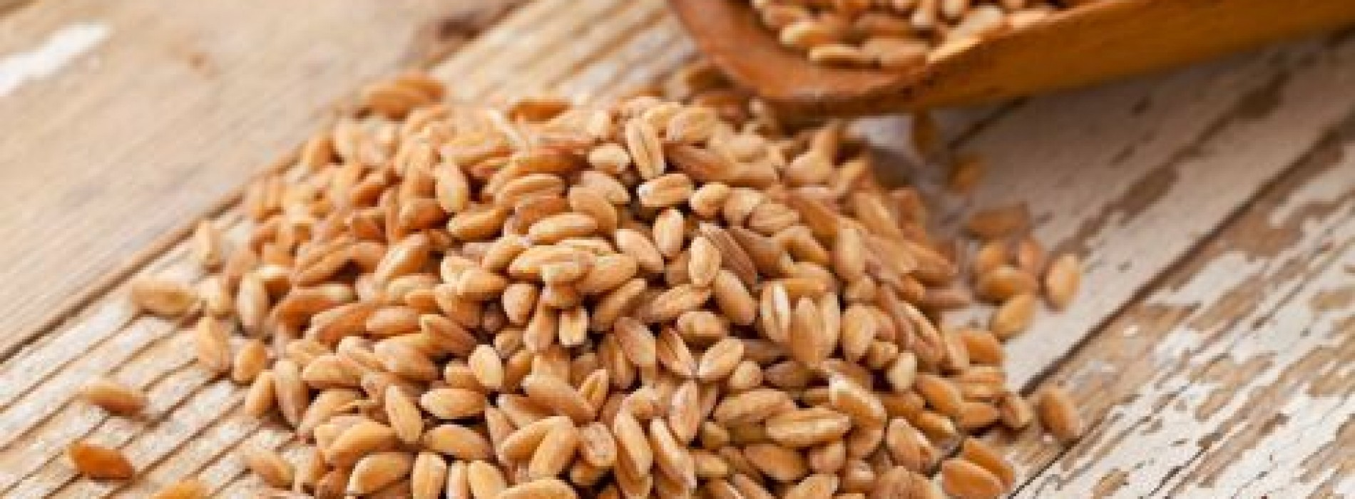 Farro: gezond graan uit Italië
