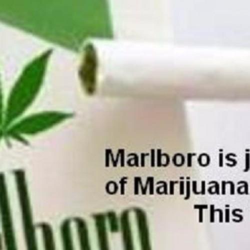 Marlboro verkoopt marihuana sigaretten in 4 Amerikaanse staten