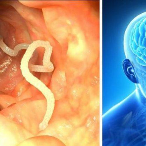 Vermijd het consumeren van dit voedsel – Het kan je hersenwormen geven! (Video)