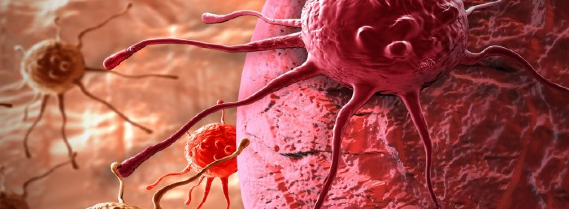 Graag Delen: Wetenschappers genezen kanker, maar niemand heeft interesse!