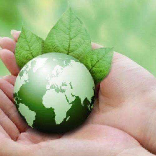 Bio is niet per se gezonder en milieuvriendelijker, plantaardig eten wel