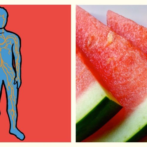 Wow wist jij dat een watermeloen zoveel gezondheidsvoordelen heeft?