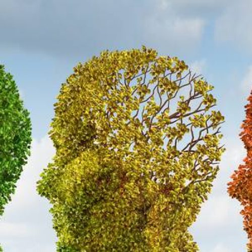Veroorzaakt te veel of te weinig magnesium dementie?