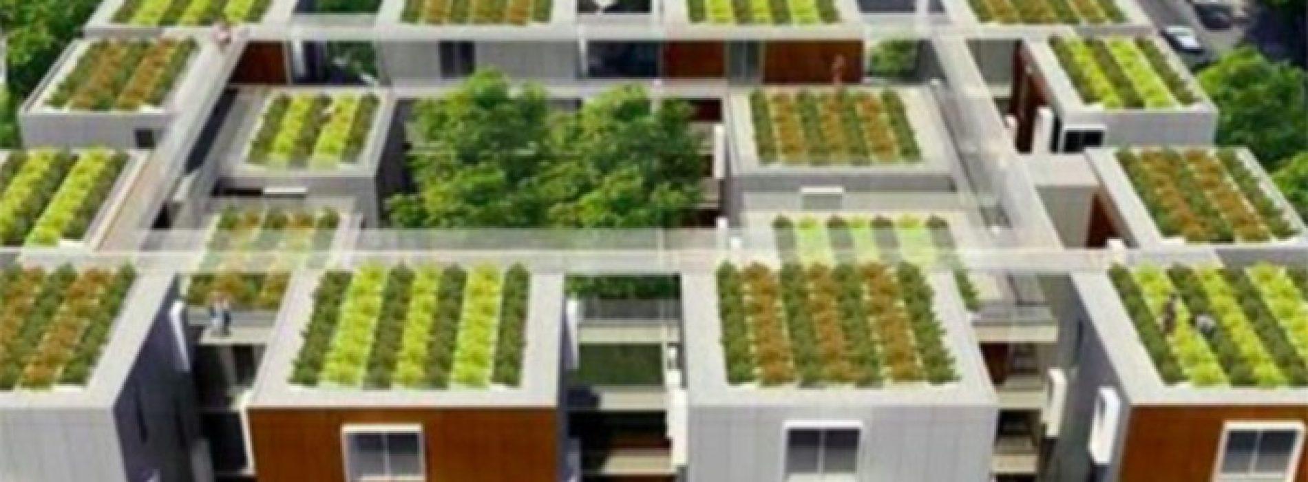 Frankrijk verklaart dat alle nieuwe daken moeten worden bedekt met planten of zonnepanelen …