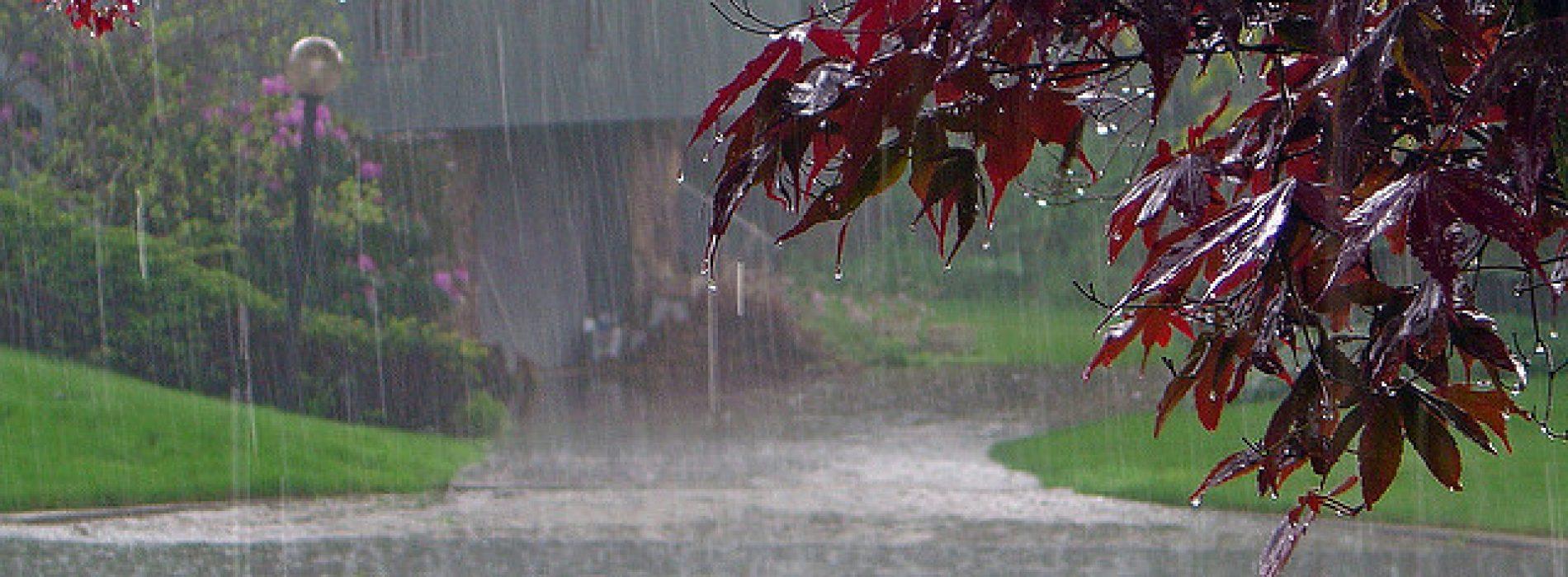 De geur van de regen vermindert stress en 7 andere voordelen van wandelen in de regen
