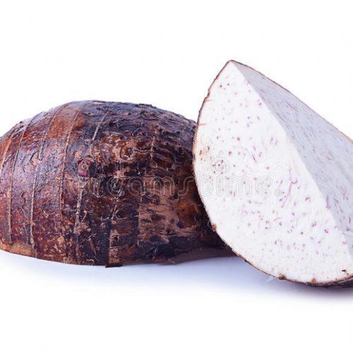 Taro heeft een uniek vermogen om 'toxines te trekken', gebruikt door genezers voor het oplossen van cysten, fibromen en het behandelen van oorpijn
