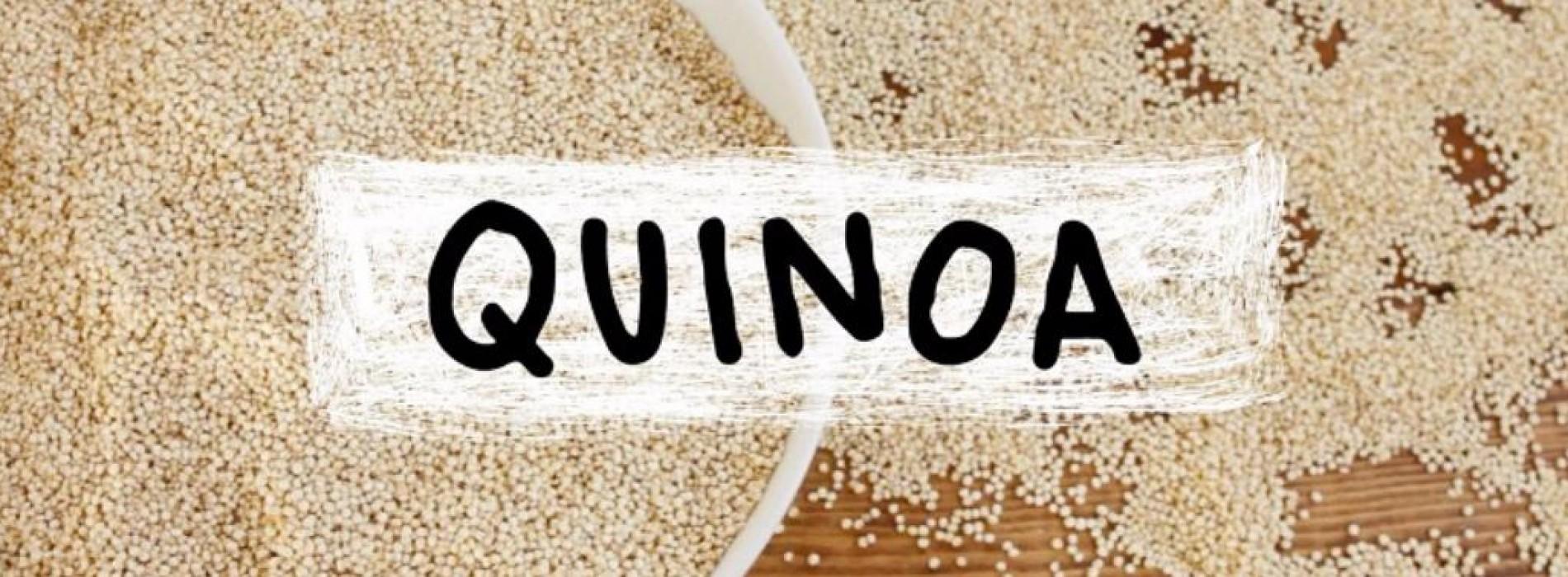 Ook nieuwsgierig naar Quinoa?