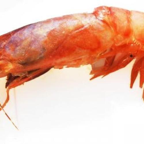 5 verontrustende dingen waarvan de voedselindustrie liever niet heeft dat je het weet