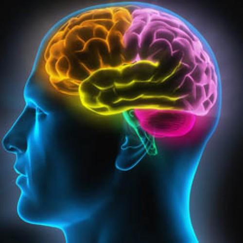 Vergroot de bloedtoevoer naar de hersenen met deze 4 tips!