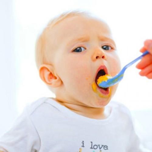 Maak nu heel simpel je eigen babyvoeding op een gezonde en heerlijke manier!