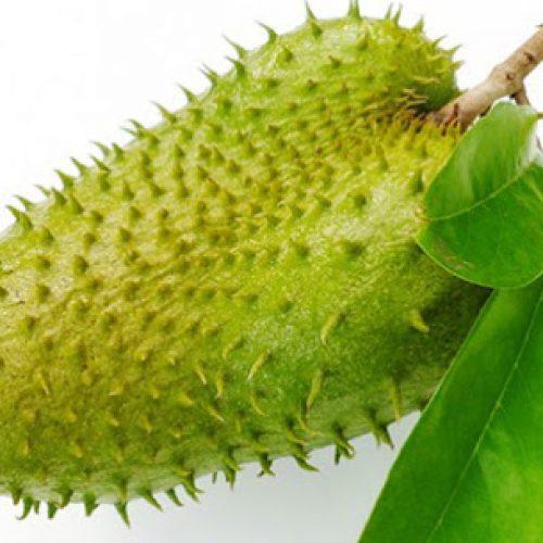 Dit fruit doodt kwaadaardige cellen van 12 verschillende soorten kanker