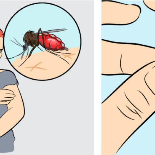 Deze vitamines zullen ervoor zorgen dat je de hele zomer GEEN last meer hebt van muggen