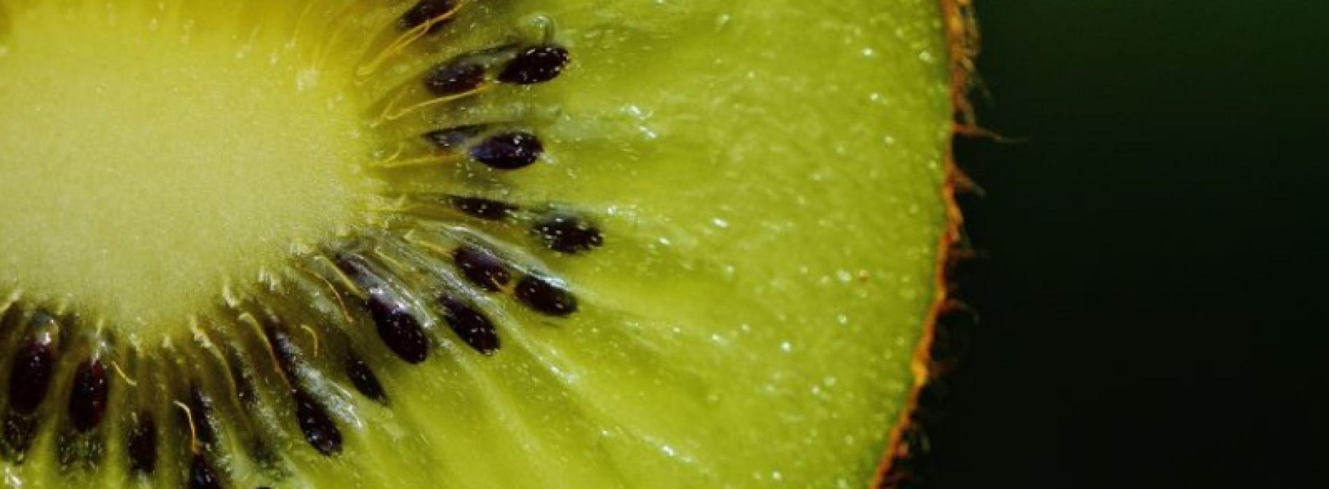 Eet 2 kiwi's per dag en profiteer van allerlei positieve effecten op je gezondheid