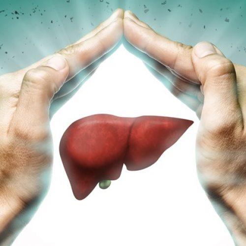 Het is officieel: zinksupplementen verminderen het risico op dodelijke leverkanker