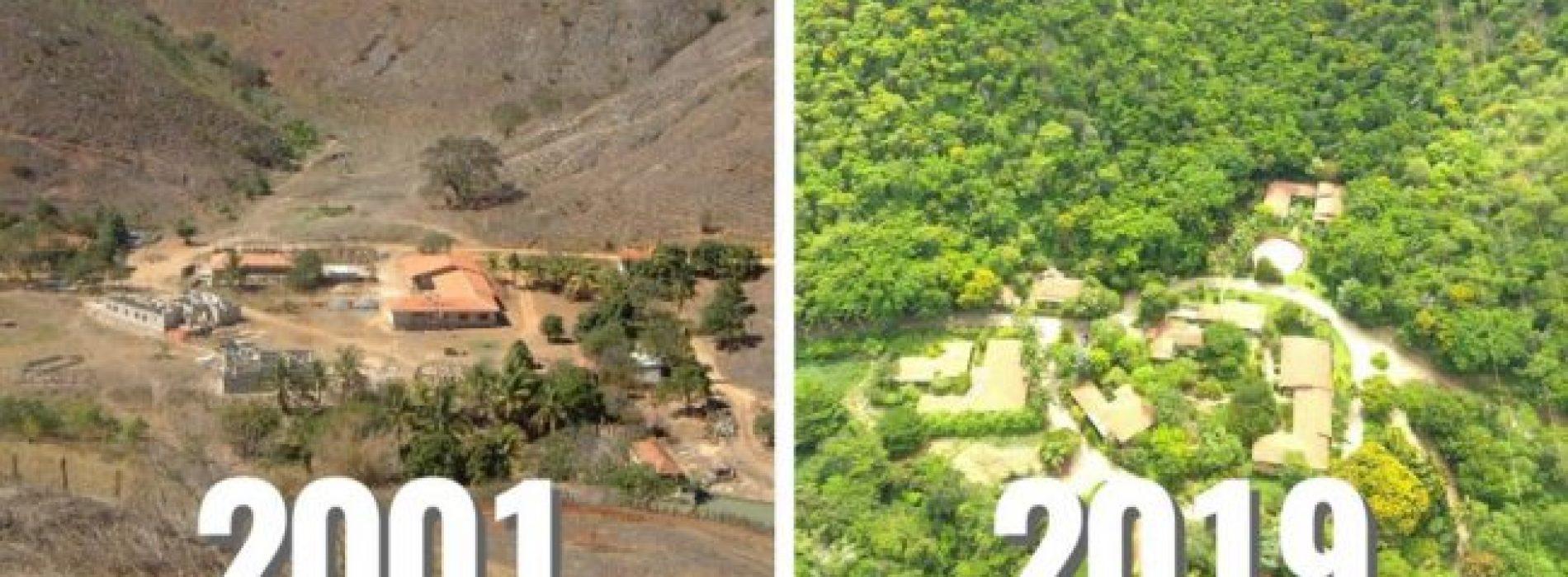 Stel besteedt 20 jaar aan het planten van bos en honderden bedreigde diersoorten zijn weer teruggekeerd