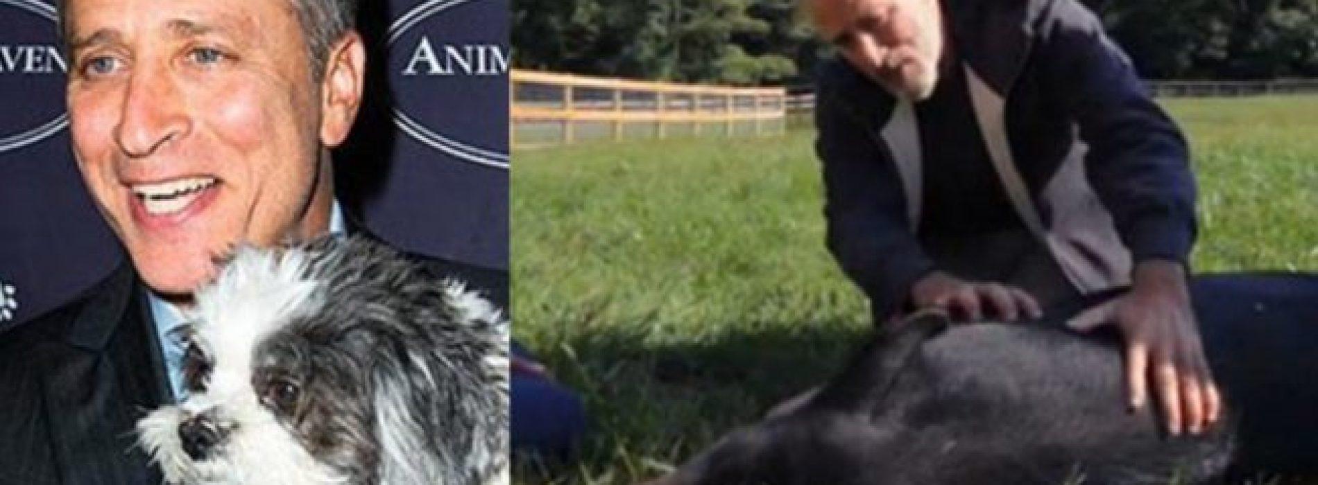Jon Stewart en zijn vrouw openden een reservaat van 12 hectare voor mishandelde dieren