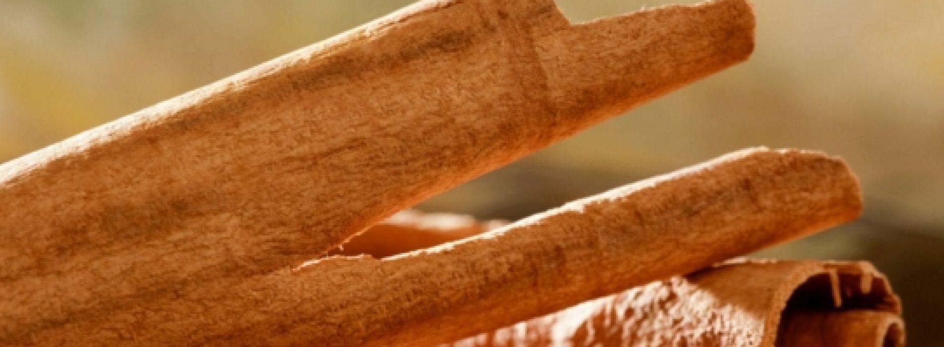 Kaneel: een zoet-pittige traktatie voor het bestrijden van Alzheimer