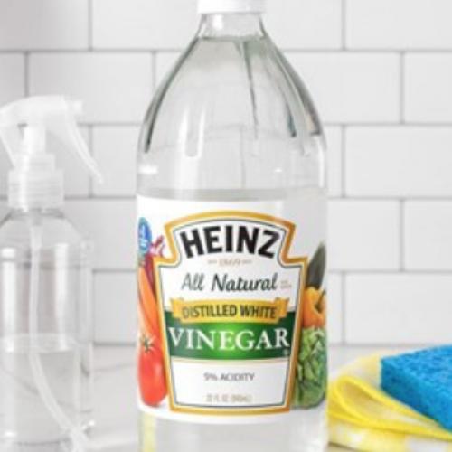 Studie vindt azijn doodt bacteriën net zo goed of beter dan Top 6 commerciële schoonmakers