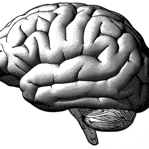 Dansen kan de tekenen van veroudering in de hersenen omkeren