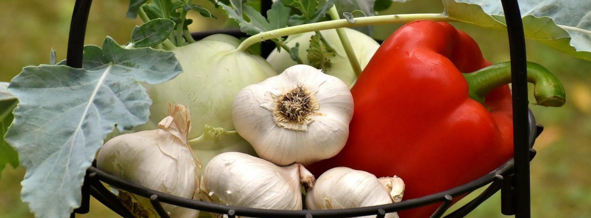 7 gezondheidsvoordelen van knoflook voor je op een rij