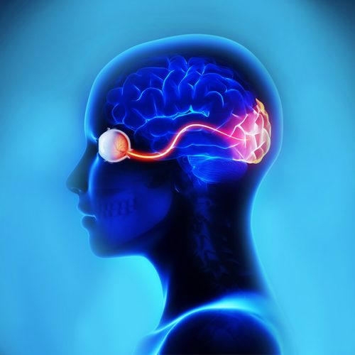 Het verband tussen hersenen en ooggezondheid