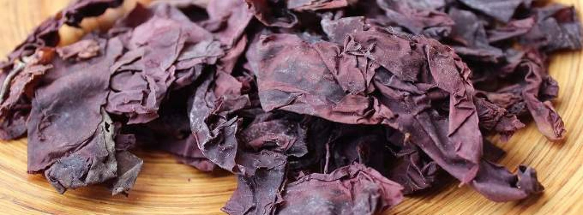 Onderzoekers ontdekken de veganistische heilige graal – zeeplant die smaakt naar bacon, voedzamer dan boerenkool