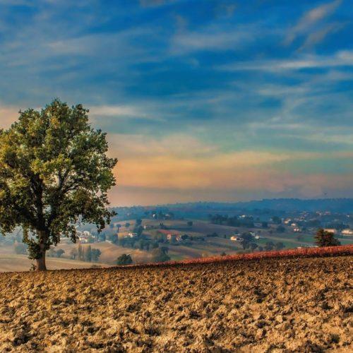 Onderzoekers: Synthetische chemicaliën in de bodem tikkende 'tijdbom'