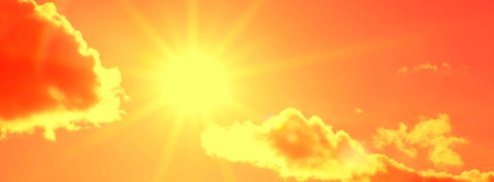 Nieuwe studies tonen aan dat vitamine D een sleutelfactor kan zijn bij het bestrijden van Covid-19-infecties