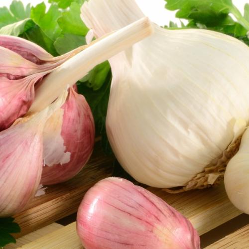 Gerijpte knoflook verbant arteriële plaque en stopt hartaandoeningen, aldus onderzoek