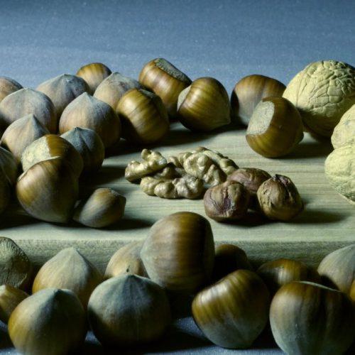 Botte WAARHEID: Krijg GEEN tekort aan DEZE essentiële voedingsstof