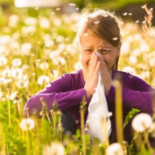 Seizoensgebonden allergieën? Deze 6 voedingsmiddelen kunnen helpen